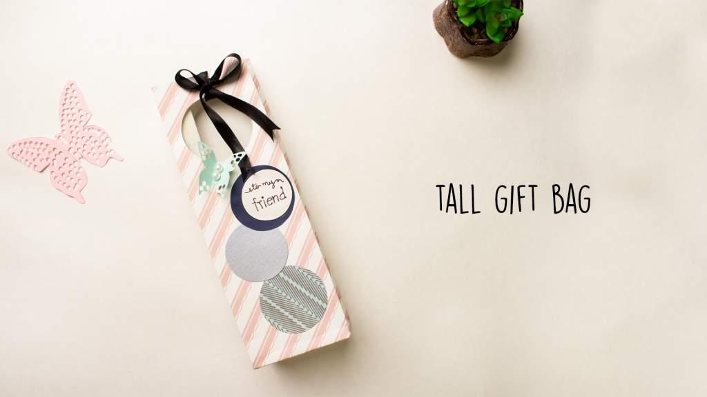Tall Gift Bag  DIY Gift bag idea  Paper Bag